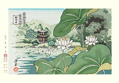 Sacred lotus (Japanese Flower and Bird Art) Tags: flower sacred lotus nelumbo nucifera nelumbonaceae masao ido modern woodblock print japan japanese art readercollection