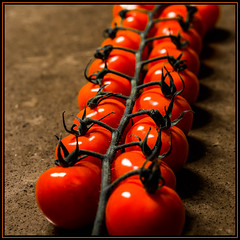 Tomatoes - Circles (KVSE) Tags: tomato bokeh cherrytomatoes red attached connected allinarow stem fresh cherry linked macro countertop xmasbokeh tomatoes redux2018 macromondays