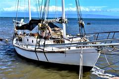 Kaunakakai Harbor (thomasgorman1) Tags: nikon boat harbor sailboat water kaunakakai hawaii island oceanfront clouds travel