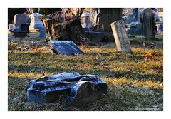 Stoned (TooLoose-LeTrek) Tags: cemetery headstone grave decay