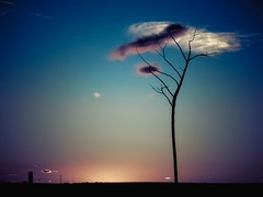 Cita (una cierta mirada) Tags: landscape sky nature tree winter sunset sun land earth outdoors blue bluesky silhouette