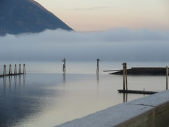 Shuswap Morning (jamica1) Tags: shuswap lake salmon arm bc british columbia canada mist fog cloud