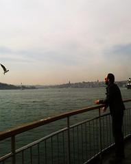 feeding seagulls (zenziyan) Tags: bosphorus istanbul seagull bird seascape ship boat sea bogazici martı vapur steamboat galata tower constantinapol constantinople