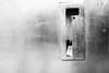 PHOTOAUTOMAT 3 (Atavachron) Tags: photobooth photoautomat berlin