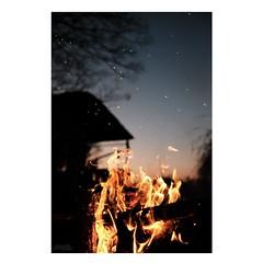 タキビユウグレ (atacamaki) Tags: xt2 23mm f14 xf fujifilm jpeg撮って出し atacamaki 撮って出し japan ibaraki kasumigaura 出島の家 焚き火 sunset evening 夕暮れ camp nature home day life 暮らし fire time bonfire かすみがうら うたうたい交響曲