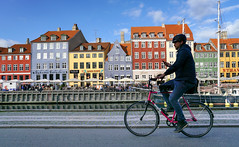 connected (Lisa Ouellette) Tags: copenhagen denmark greenland cycling texting riding connected helmet nyhaven street bicycle narnia seawall
