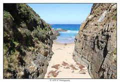2018.03.11 Tasmanie 49 (garyroustan) Tags: tasmania tasmanie australia australie