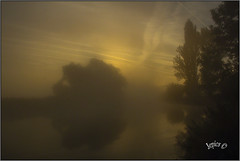 Rolling Mist. (Picture post.) Tags: landscape nature green mist water sunrise trees paysage arbre reflections