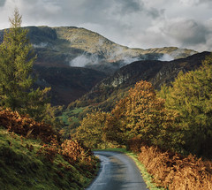 Autumn Road (Benjamin Driver) Tags: landscape lakedistrict lake district autumn autumnal tree trees road mountains mountain cumbria orange green cloud clouds dark tarnhows tarn stitch stitched light 2018 england north uk unitedkingdom square