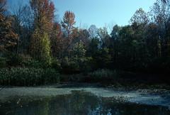 Eagle Creek Park, Indianapolis, Indiana (Roger Gerbig) Tags: eaglecreekpark indianapolis indiana canoneos3 canonef28105f3545 kodachrome64 pkr64 slidefilm transparencyfilm 35mm 135 film
