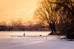 A Golden Canadian Moment (Neil Cornwall) Tags: 2019 canada february ontario rivercanard snow winter frozen hockey ice sunset