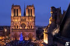Watchman (A.G. Photographe) Tags: anto antoxiii xiii ag agphotographe paris parisien parisian france french français europe capitale d850 nikon nikkor 2470 notredame cathédrale préfecturedepolice