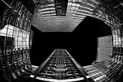 """Animal Sky"" (T.Seifer : )) Tags: architecture buildings cityscape blackandwhite blackwhite view light outdoors structure modern hamburg design outside sky"