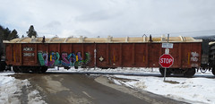 NOWAY (arrowlakelass) Tags: graffiti train freight boxcars paint steel cpr railway p1030221