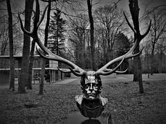 (Uno100) Tags: kroller muller museum netherlands head jan fabre deer human 2019