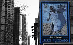 Blue Chicago (Anthony Mark Images) Tags: bluechicago bluesmusic chicago usa skyscrapers windows wallmural painting microphone ladysingstheblues lady longdress singer singing art urbanart brickwall blacklady bar blues music illinois selectivecolour blackandwhite wallart