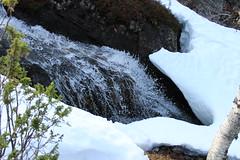 Tunturipuro (veerake) Tags: brook stream akalauttapää inari finland nature pure water luonto tunturipuro puro