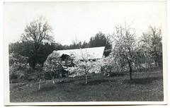 . (Kaïopai°) Tags: old alt vintage haus house building gebäude garten garden spring frühling baumblüte obstbaum obstbaumwiese
