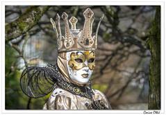 Carnaval vénitien de Remiremont 2019 : 1 (C. OTTIE et J-Y KERMORVANT) Tags: portait carnaval carnavalvénitien remiremont lorraine france vosges