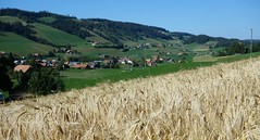 DSC05642 (ursrüegsegger) Tags: linden juli august getreideernte bauernhöfe landschaft regenbogen
