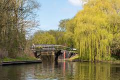 Stratford-upon-Avon (hussey411) Tags: bridge reflection reflections trees 35mm nikon river riveravon stratforduponavon