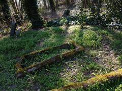 Verfallener Friedhof (claudine6677) Tags: friedhof graveyard old decay verfallen alt gräber graves tombs grabstein