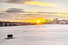 Winter sunset in Ebmath (GerWi) Tags: schneefeld snowfield sonne sun himmel sky sunset fz1000 winter