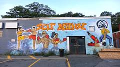 Self Defense (Coastal Elite) Tags: 374mma bedford highway novascotia mma fitness gym jiujitsu halifax hrm martialarts selfdefense mixedmartialarts training muaythai kickboxing roycegracie network combat fight fighting boxing commissioned mural murals boxers fighters building wall buildings murale graffiti urban streetart rockinghamplaza rockingham plaza