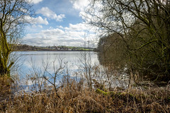 SJ1_5015 - Edgworth, from Wayoh Reservoir (SWJuk) Tags: swjuk uk unitedkingdom gb britain england lancashire bolton edgworth wayohreservoir reservoir water flat calm reflections trees bushes grass grasses reeds bluesky clouds whiteclouds spring winter landscape waterscape countryside scenery view 2019 feb2019 nikon d7200 nikond7200 nikkor1755mmf28 rawnef lightroomclassiccc