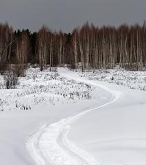 Winter road / Зимняя дорога (dmilokt) Tags: природа nature пейзаж landscape лес forest дерево tree снег snow dmilokt nikon d850