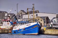 Fraserburgh Harbour - Aberdeenshire Scotland -  23/02/2019 (DanoAberdeen) Tags: danoaberdeen danophotography 2019 fraserburghscotland fraserburgh fraserburghharbour fishing fishingvillage fishtown trawlermen trawler salmon cod haddock crabs fishingboat prawns aberdeen aberdeenscotland aberdeenshire candid amateur creels lobster