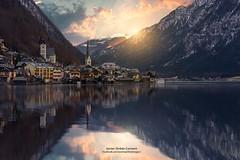 HALLSTATT (Javier Girbés) Tags: javiergirbés canon6d singhraywarmingpolarizer hallstatt austria lake winter swans amanecer sunrise