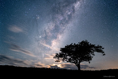 Moonrise Milky Way (hakannedjat) Tags: moonrise moon moonlight milkyway milkway stars astro astrophotography astroscape sony sonya7rii a7rii