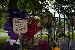 (M J Adamson) Tags: memorial mosqueshooting christchurchmosqueshooting christchurchmosqueterrorattacks christchurch canterbury nz newzealand