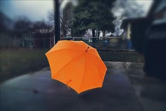 Our Daily Challenge: Orange (Sue90ca Still Struggling To Find Time To Comment) Tags: canon 6d odc orange umbrella
