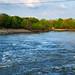 Fishing on the Sulphur River - Wright Patman Dam, Texas