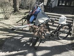 ready for the tour (genelabo) Tags: ski skitour fahrrad radl bäckerrad genelabo gene cargo bike bicycle