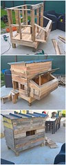 Such a beautiful idea of wood pallet chicken coop has been introduced in this pi… (Read News) Tags: such beautiful idea wood pallet chicken coop has been introduced this pi…