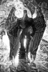 Ha llegado un ¿ángel? (coverkill) Tags: blancoynegro black white figura plástico çhumo atmosfera luz contraluz edición