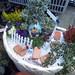 緑豊かな庭を持つ家のかわいいミニチュア風寄せ植えの写真