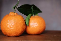 All oranges are equal but some oranges are more equal than others. (ianmiller6771) Tags: