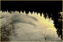 Cloud reflection (Wrightview Photography) Tags: clouds reflection water silhoutte trees sun branch