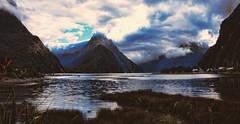Paisaje de Milford Sound (Miradortigre) Tags: newzealand milfordsound landscape mountain sea mar clouds nubes nubens montaña nuevazelanda sound grass pasto water element flickr