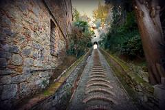 Antica scalinata. (Enzo Ghignoni) Tags: scalini piante salita muri cielo