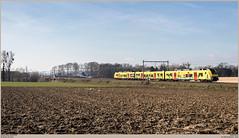 NMBS 08174 @ Saintes (Wouter De Haeck) Tags: belgië belgique belgien infrabel l94 halle blandain brabantwallon saintes tubize nmbs sncb desiro siemens lego trainworld strein streinbrussel trains trainsbruxelles s6 schaarbeek aalst