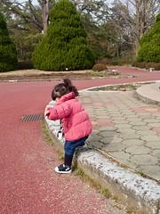 2019-02-22 14-06-13 (minority318) Tags: daigocho kyotofu 日本 jp