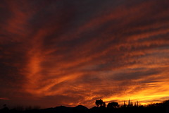 Sunset 3 5 19 #12 (Az Skies Photography) Tags: sun set sunset dusk twilight nightfall sky skyline skyscape rio rico arizona az riorico rioricoaz arizonasky arizonaskyline arizonaskyscape arizonasunset cloud clouds red orange yellow gold golden salmon black march 5 2019 march52019 3519 352019 canon eos 80d canoneos80d eos80d canon80d