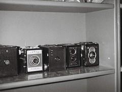 Box cameras (2) (Matthew Paul Argall) Tags: hanimex110if fixedfocus 110 110film subminiaturefilm lomographyfilm 100isofilm blackandwhite blackandwhitefilm grainyfilm camera cameras boxcameras