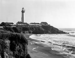 Pigeon Point Lighthouse (bad.moon) Tags: 4x5 hwy1 ilfordfp4plus nikkor180mmf56 pigeonpointlighthouse blackandwhitephotography burkeandjamespress4x5 california coastline ilfordfilm largeformat pacificocean seascapephotography sheetfilm