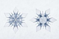 Origami Snowflake (Riccardo Foschi) (De Rode Olifant) Tags: origami paper paperart papiroflexia marjansmeijsters riccardofoschi origamisnowflake snowflake 3d